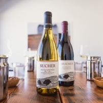 bucher-17